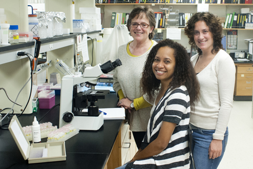 From left, UMSL biologist Patricia Parker and doctoral students Samoa Asigau and Mari Cruz Jaramillo