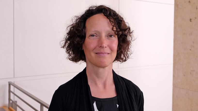 UMSL Museum Studies Program names new director