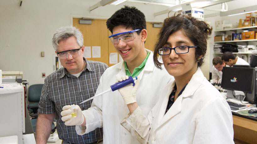 Summer STARS program to turn high school students into college scientists