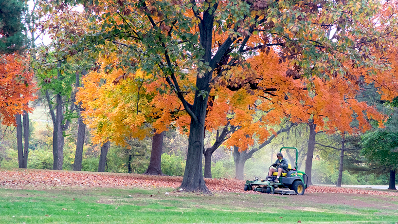 Eye on UMSL: Autumn mulch