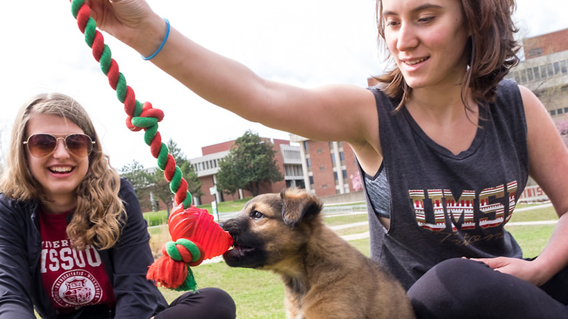 Eye on UMSL: Puppy love