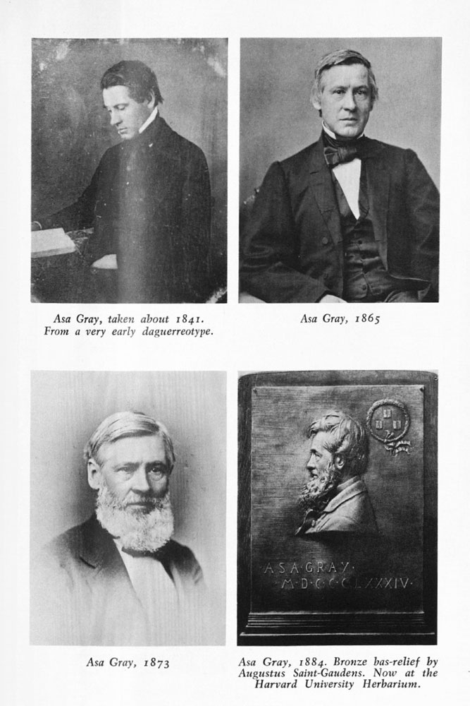 "Various portraits of Asa Gray from the text ""Asa Gray"" by A. Hunter Dupree, published by The Belknap Press of Harvard University Press in 1959)"