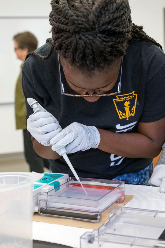 Paris Siggers, a senior at Jennings High School this year, loads a gel with avian DNA during the last week of her internship at UMSL. Siggers spent the other weeks in Assistant Professor Michael Hughes' lab studying the genetics of circadian rhythms.
