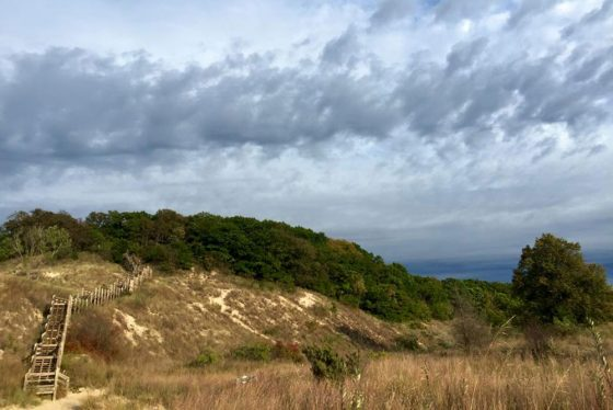 Indiana Dunes National Lakeshore (Photo courtesy of Save the Dunes)