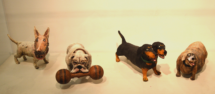 Various dogs on display