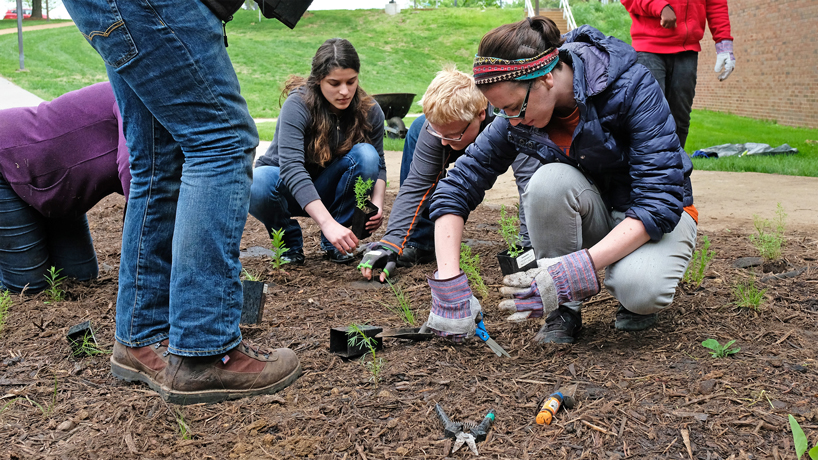 A UMSL garden for Earth Day