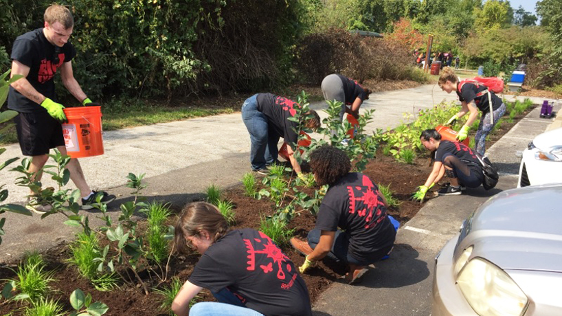 Student volunteers contribute 175 service hours to Great Rivers Greenway project during The Big Event