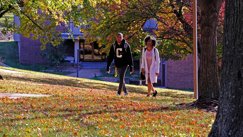 Missouri Department of Conservation awards TRIM grant to UMSL to inventory campus trees