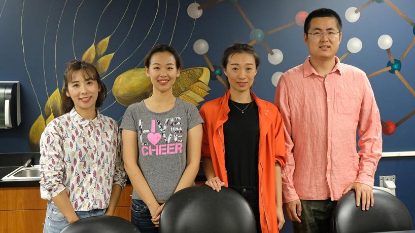 UMSL partners with Shenyang Normal University for innovative doctoral program