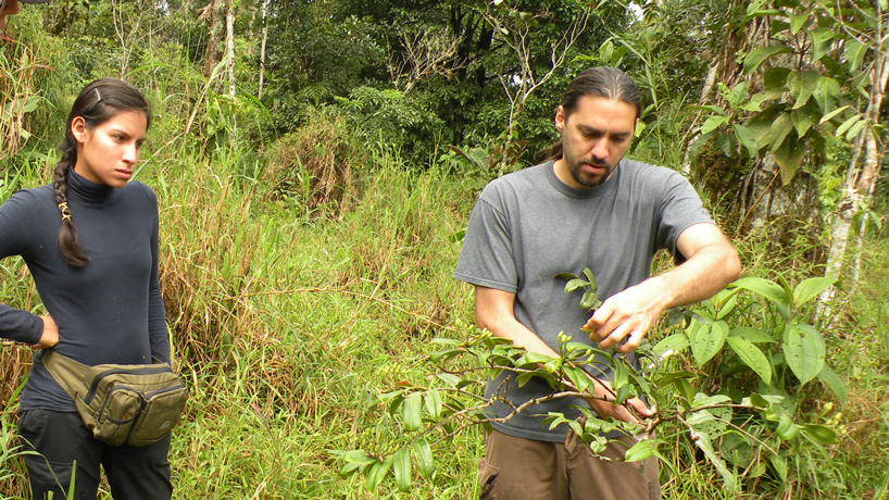 Nathan Muchhala's research on plant resilience draws attention