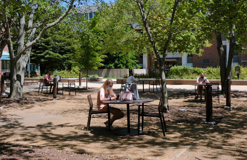 Studying in the Quad