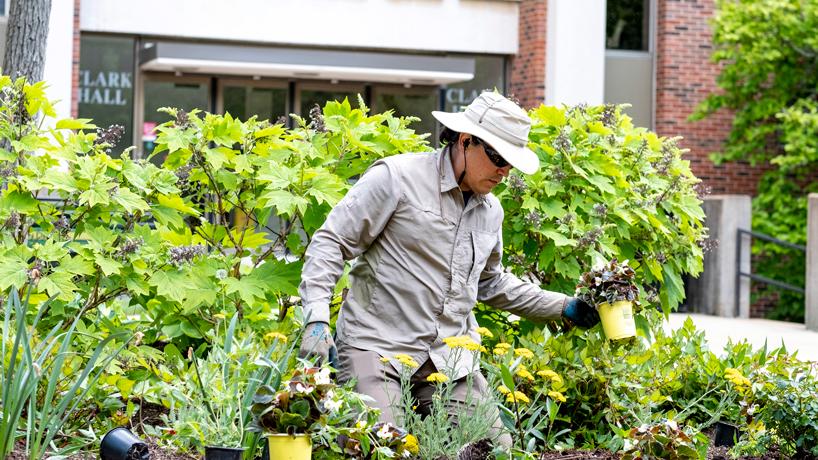 Eye on UMSL: Spring planting